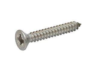 Stainless Steel 304 Self Tapping Screw D4.0*d3.0*h8.0L30