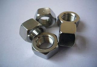 Stainless Steel Hex Nuts M20