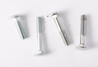 Stainless Steel Round Head Square Neck Carriage Bolt